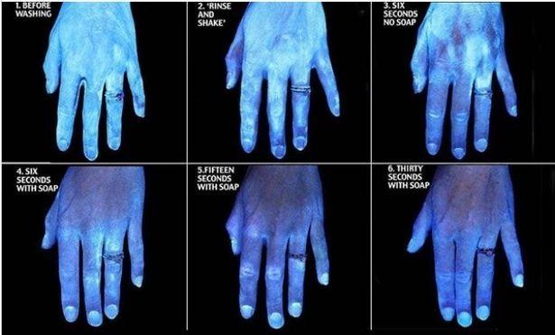 الصور التي التقطت تحت ضوء الأشعة فوق البنفسجية.jpg